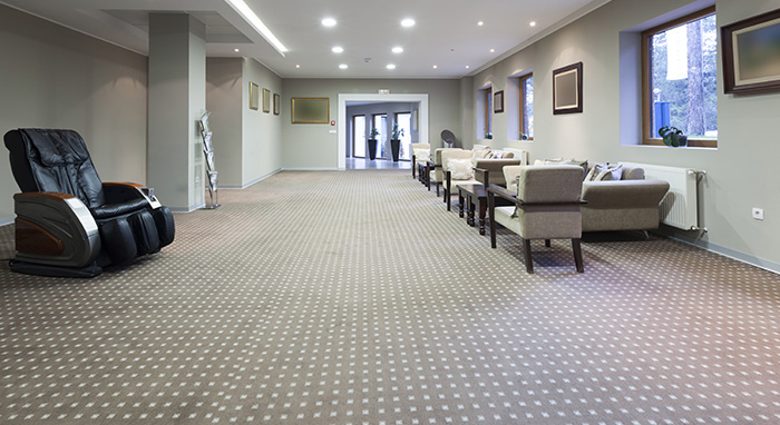 Carpet Care for Commercial Purposes